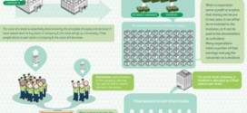 "Great Infographic Explaining ""What is a stock?"""